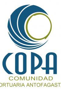 Logo Copa oficial